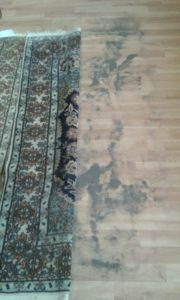 karpet-vuil
