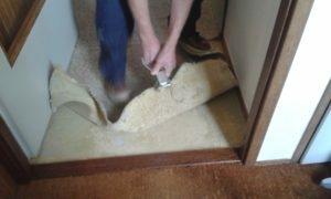 tapijtverwijderen